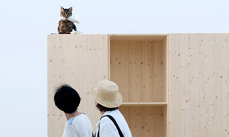 "Liam Gillick (Allemagne), fichier : Liam-Gillicks-installatio-002.jpg ou Venice-Biennale-2009-Veni-014.jpg Légende: Liam Gillick. Vue de l'installation "" How are you going to behave? A kitchen cat speaks"", 2009"