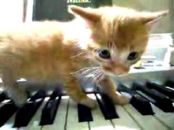 Cory Arcangel drei klavierstucke