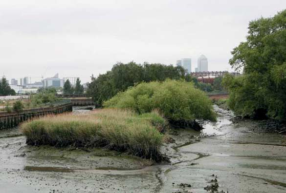 Lara Almarcegui Guide des terrains vagues de la Lea Valley, 12 espaces vides en attente des Jeux olympiques de Londres, / Guide to the Wastelands of the Lea Valley: 12 empty spaces await the London Olympics, 2009. Courtesy de l'artiste / the artist; Ellen de Bruijne Projects, Amsterdam.