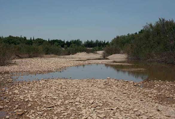 Lara Almarcegui Terrain vague sur les rives de l'Ebro, Saragosse, / A Wasteland on the Banks of the Ebro, 2009. Courtesy de l'artiste / the artist; Ellen de Bruijne Projects, Amsterdam.