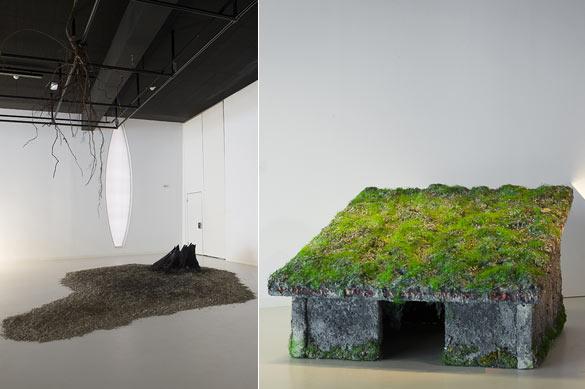 """Vues de l'exposition """"Etrange nature""""."""