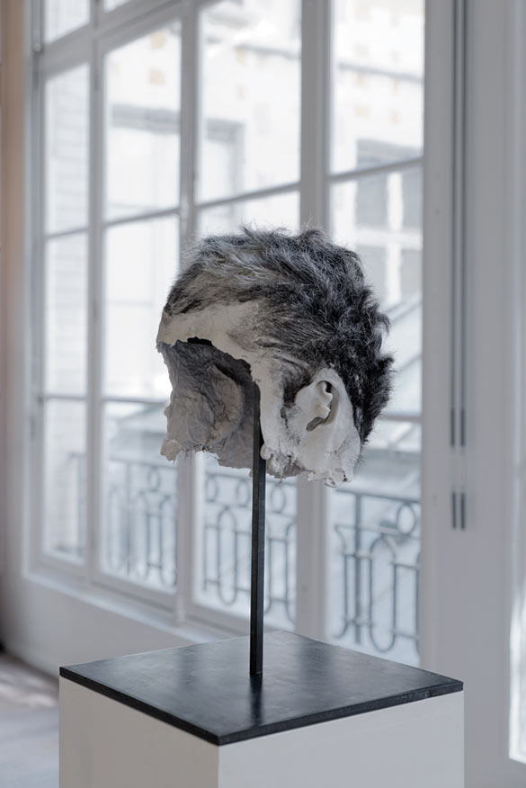 Bruno Botella, Oborot, 2012, silicone, cheveux, courtesy galerie Samy Abraham Paris.
