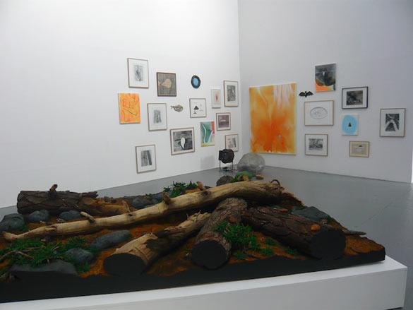 Vue de l'exposition Natura Lapasa au Confort Moderne, Poitiers (Piero Gilardi, Anne Colomes, Samuel Richardot, Laurent Le Deunff, Aurélie Salavert). Photo - A.Launay.
