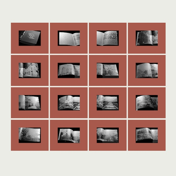 Suzanne Lafont, The First Two Hundred Fifty Five Pages of Project on The City 2, Harvard Design School, GUIDE TO SHOPPING, Taschen publishers, 2001, (détail) 2014, ensemble de 255 planches, impression encres pigmentaires sur papier, chaque planche 43,81 x 53,29 cm