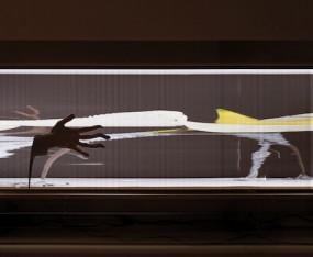 Christophe Lemaitre, La longue image panoramique de la révolution d'une œuvre