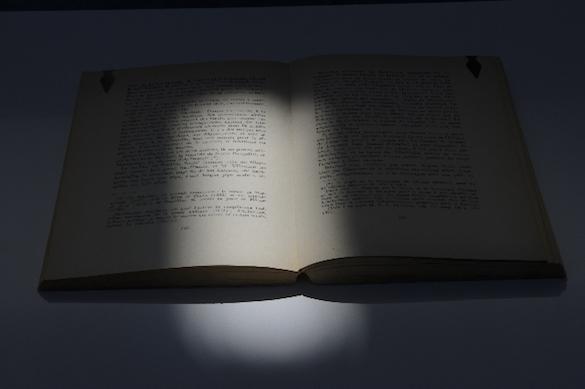 An Underlined Book, 2015 Livre surligné Livre, socle, marque-pages 108 x 56 x 38 cm Courtesy de l'artiste et des galeries Messen de Clercq, OMR, Travesia Cuatro et 1301 PE