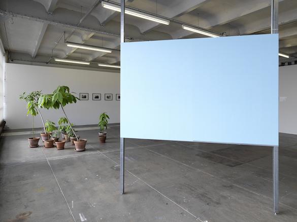 Vue de l'exposition 'tout le monde', le Crédac, 2015. Photo: André Morin.