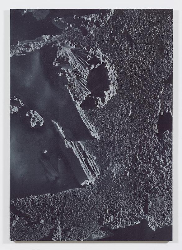 Daniel Lefcourt, Anti-Scan, 2015. Pigment et uréthane sur toile, 203,2 x 142,2 cm. Courtesy Daniel Lefcourt ; Campoli Presti, London / Paris.